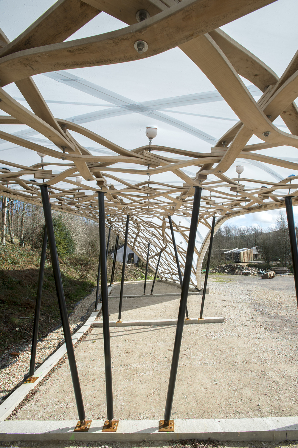 Hooke_Park_Design_&_Make_Timber_Seasoning_Shelter_©Valerie_Bennett_2014_02_22_0121.jpg