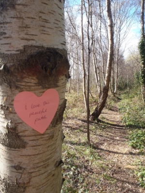 Find and honour that special nature spot . A patch of Birch trees I found on my birthday wander. :)
