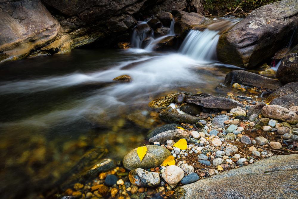 Small Montana Stream