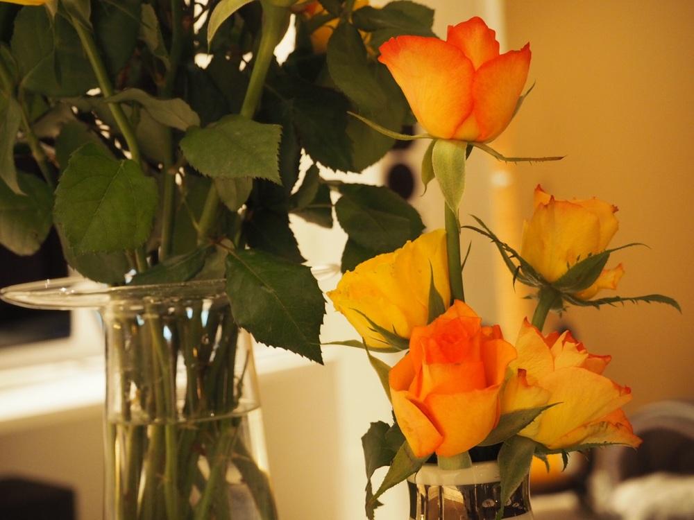 I anledning Halloween får det holde med roser i orange farge. Resten av den grøssete pynten får andre ta seg av i år;)