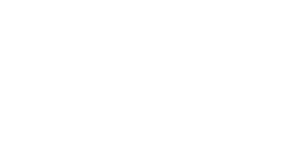 Phoenix_white_BRIX.png