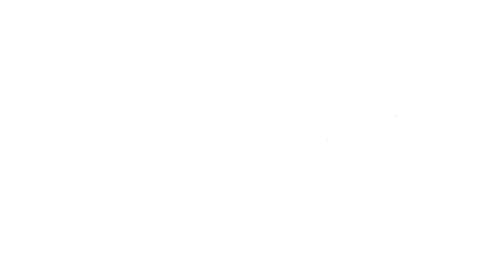 ArizonaFilmFest_white_BRIX.png