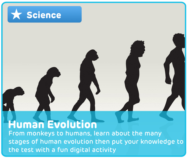 Human Evolution Digital Activity