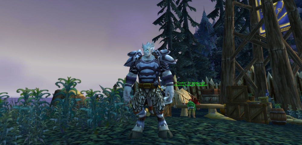 My super cool 10th level Draenai Shaman on Azuremist Isle. He's just a baby!