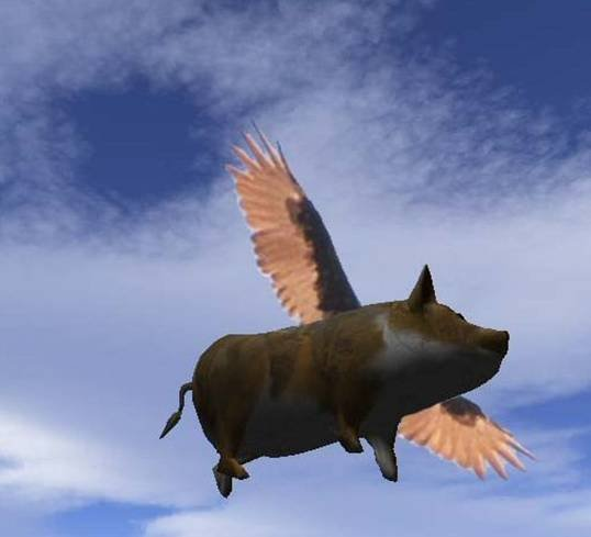 Pig fly