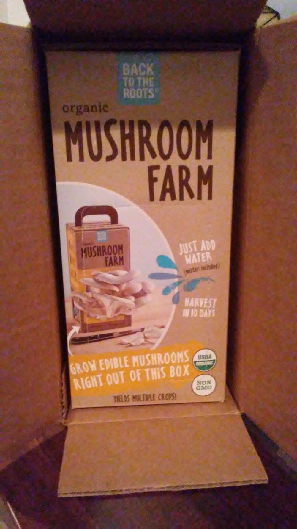 The mushrooms grow right in the box! I mean, the box within the box.