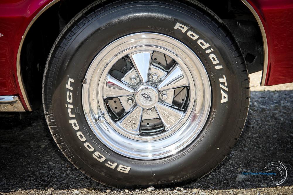 65.Pontiac.GTO.WM-9.jpg