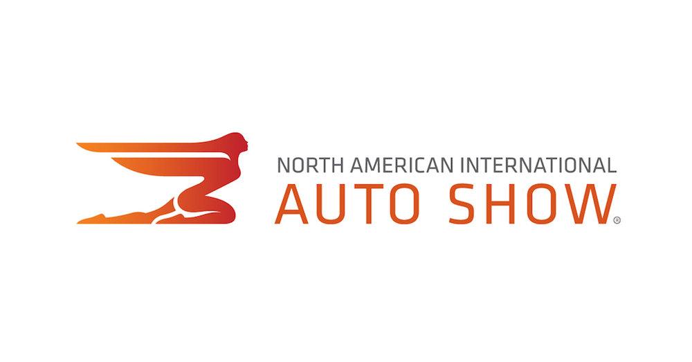 NAIAS- logo.jpg