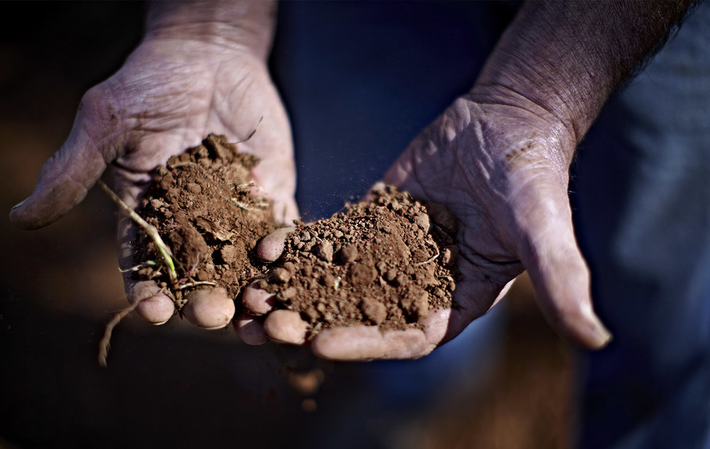 Kylie-Grinham-Farmer-Hands-in-dirt.jpg
