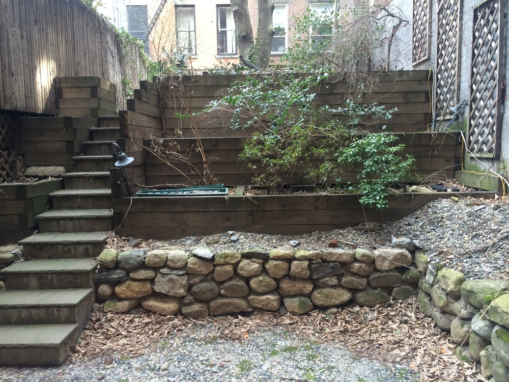 Manhattan backyard / BEFORE