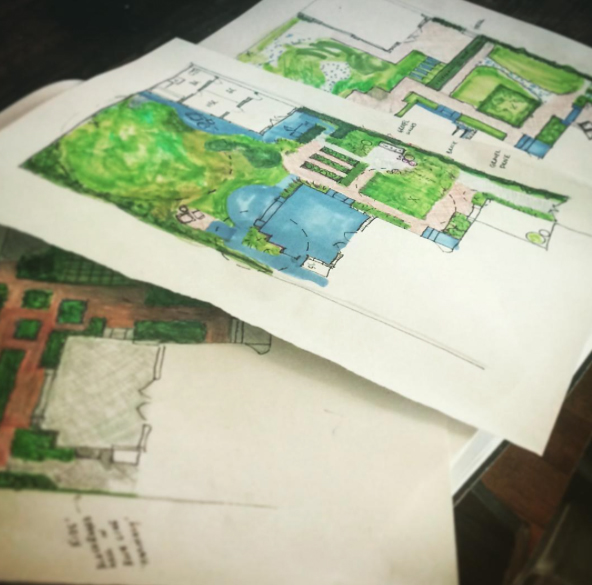 Schematic design (3 options, preliminary design phase) for Los Angeles backyard garden.