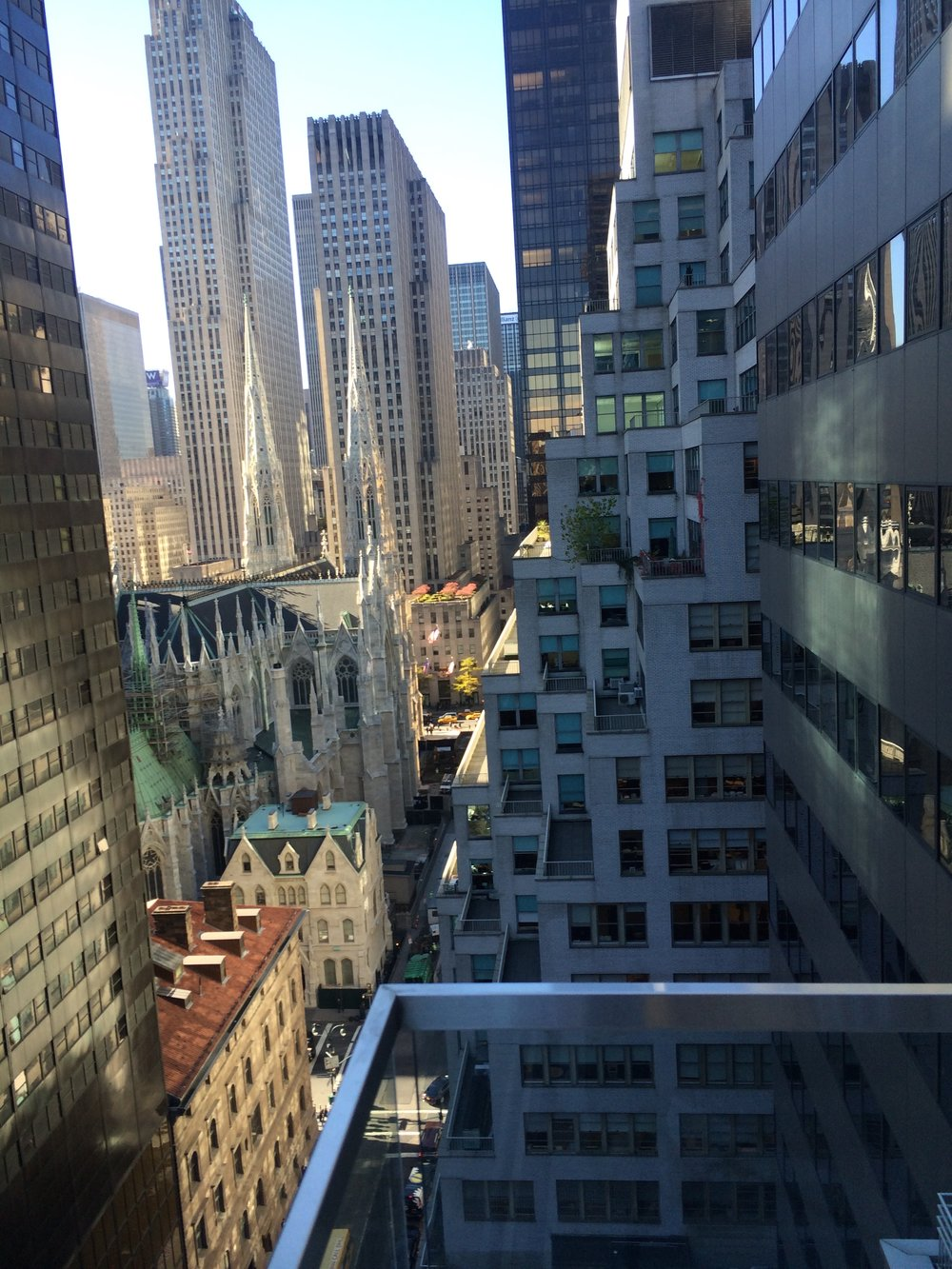 Views extend to St Patrick's Cathedral and roof gardens at the Rockefeller Center.