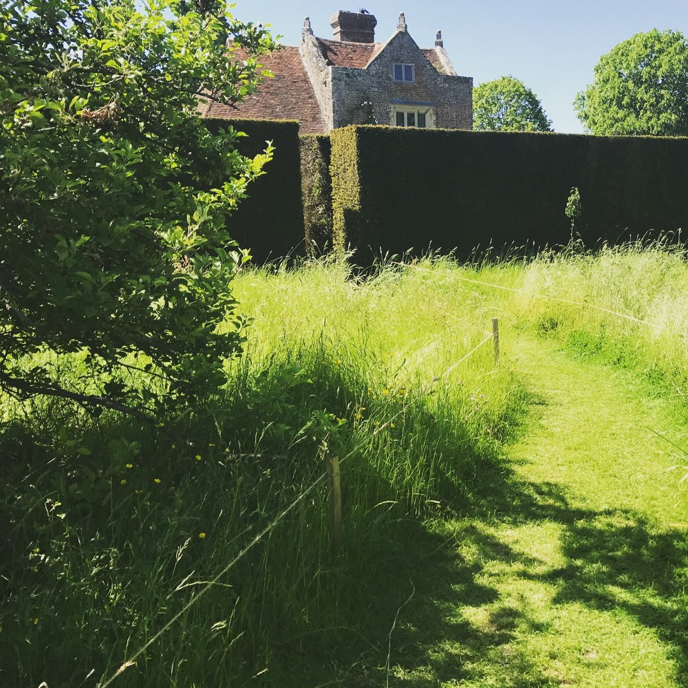 Sissinghurst's meadow garden, heading back to the formally delineated garden rooms and the buildings.