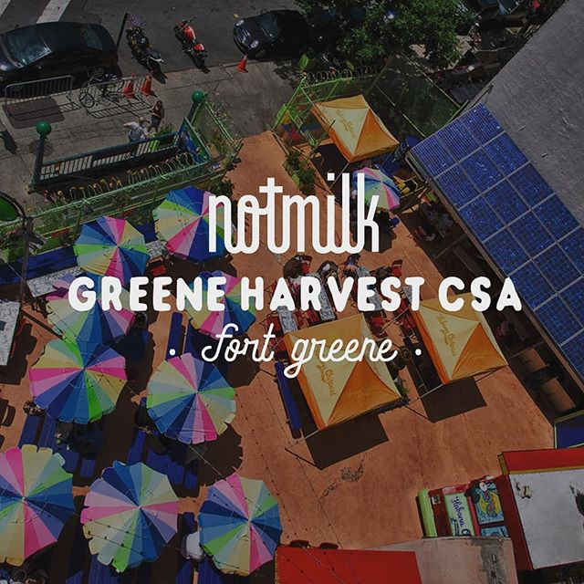My Brooklyn folks - we are partnering with Greene Harvest CSA for another delicious season. Swing by and say hi 👋👋to us and all the lovely neighborhood folks of the CSA. Sign ups for CSA shares are in person at Habana Outpost on the following dates:  5/10 8-9pm 5/12 12-3pm 5/15 8-9pm 5/16 8-9pm 5/19 12-3pm 5/20 12-3pm  Last day to sign up is Sunday May 20th! Also - we offer picks ups throughout the CSA season at the Greene Harvest CSA. So if you know you're going to be spending time in Brooklyn and are dying for some fresh NotMilk - hit us up. Check out our website for more details on the CSA and your NotMilk share! 😎🥛 🥒🥦🍄🌽🥕🥔🍆🥑🍏🍑🍓🍒 #NotMilknyc #freshforyou #freshNotMilk #vegan #nycfood #realfood #nofillers #almond #macadamia #cashew #walnut #freshnutmilk #freshNotMilk #vegan #lowsugar #freshisbest #greeneharvestcsa