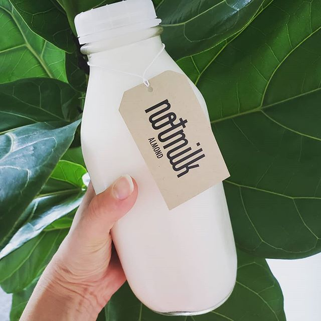 In denial that it's already September. It's not quite time yet but has anyone else noticed that the very first leaves are starting to fall? So glad it's feeling tropical outside today. 🌿🌿🌿 #NotMilknyc #freshforyou #freshNotMilk #vegan #nycfood #realfood #nofillers #almond #freshnutmilk #freshisbest