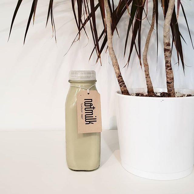 Cold weather have you down? Just plop down next to your most tropical plant, treat yourself to something and channel thoughts of warmer weather! Today for me it's some pumpkin date Notmilk! Tomorrow it will probably be something hot 🙄😋- keep your eye peeled!! 😁😎🏝 #alreadyoverwinter #freshNotMilk #NotMilknyc #nycfood #realfood #nofillers #freshnutmilk #freshforyou #pumpkinNotMilk