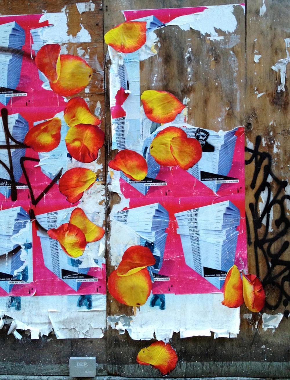 Cornelia Street Petal Toss (detail), NYC