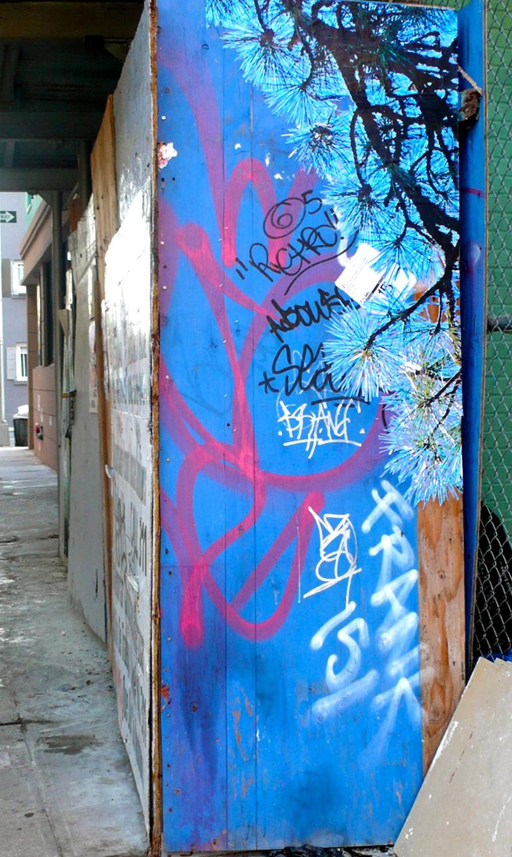Blue Pine, Thompson St., NYC