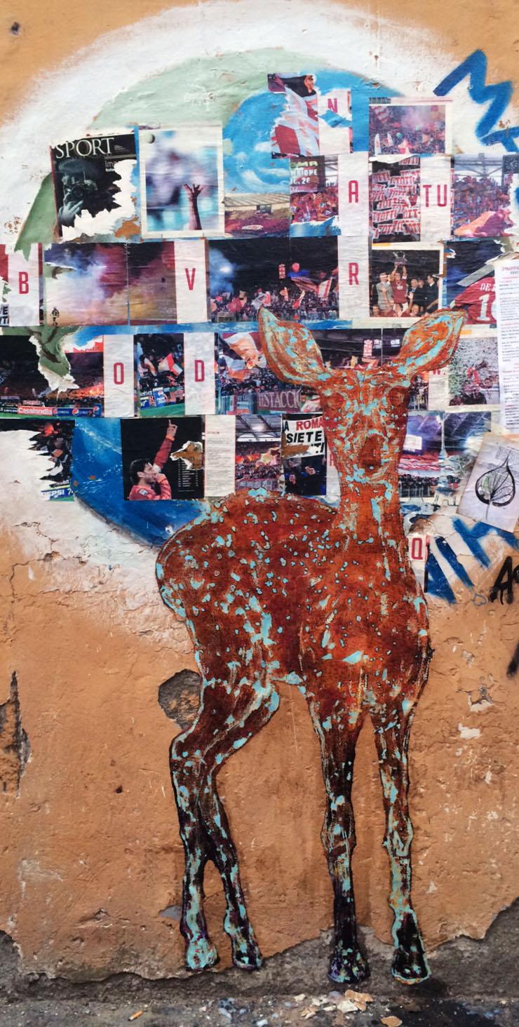 Fawn in Rome Italy.jpg