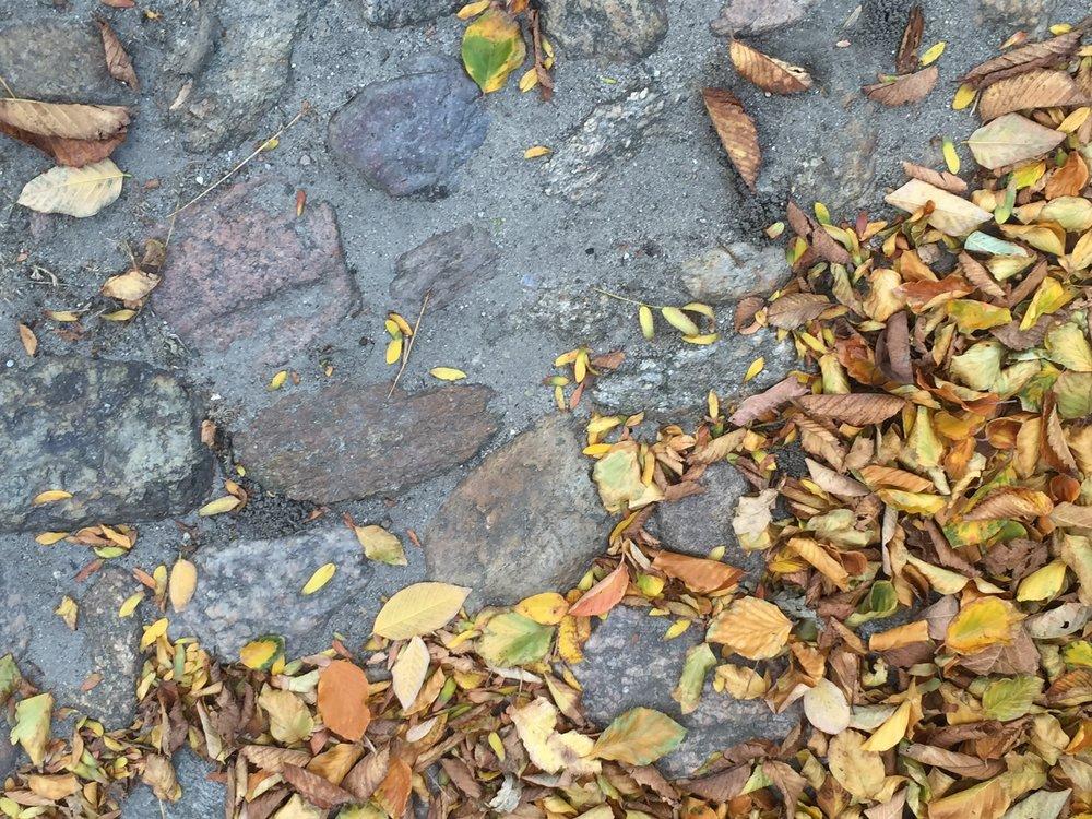 cobblestonestreetsnantucket.jpg