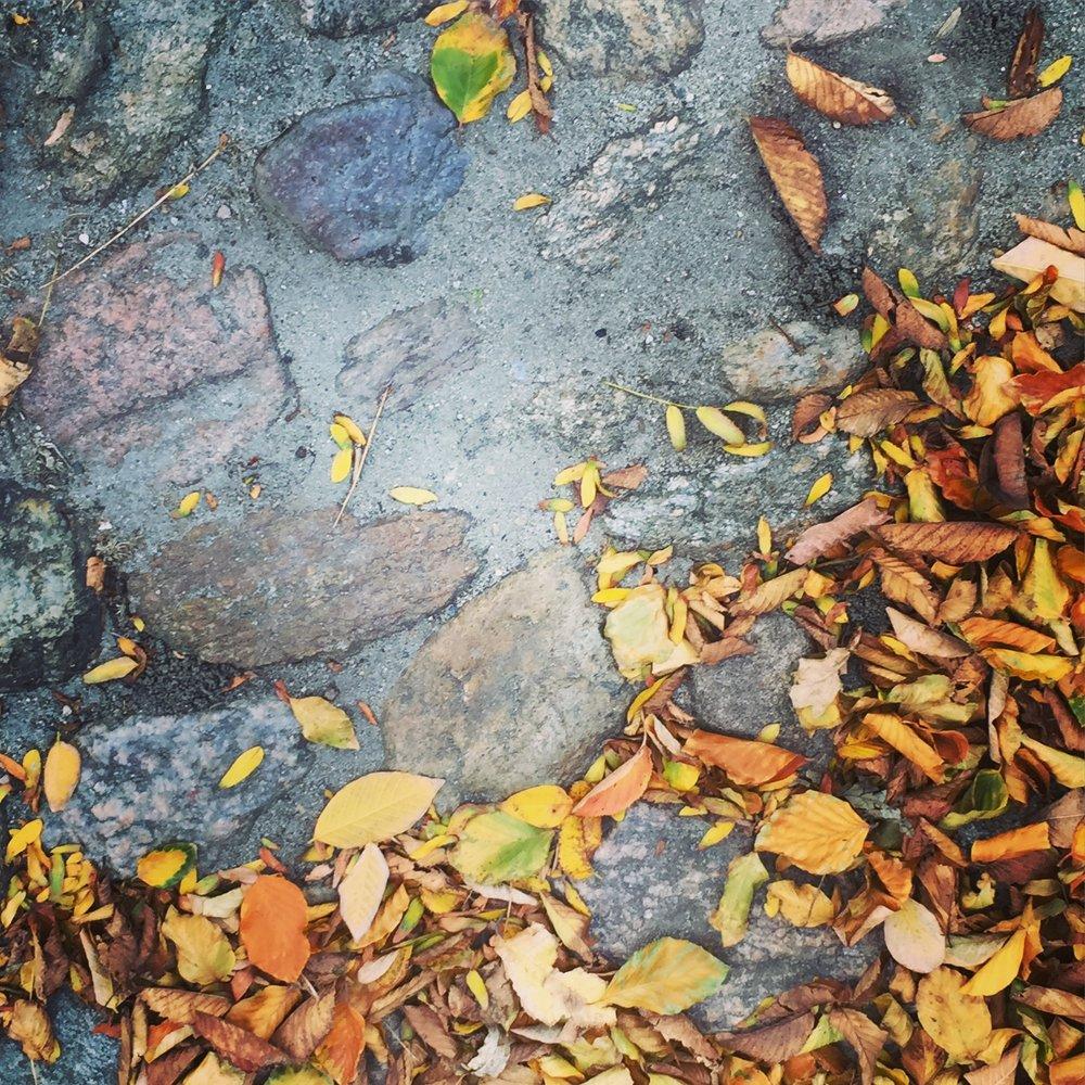 cobblestone_streets_nantucket.jpg