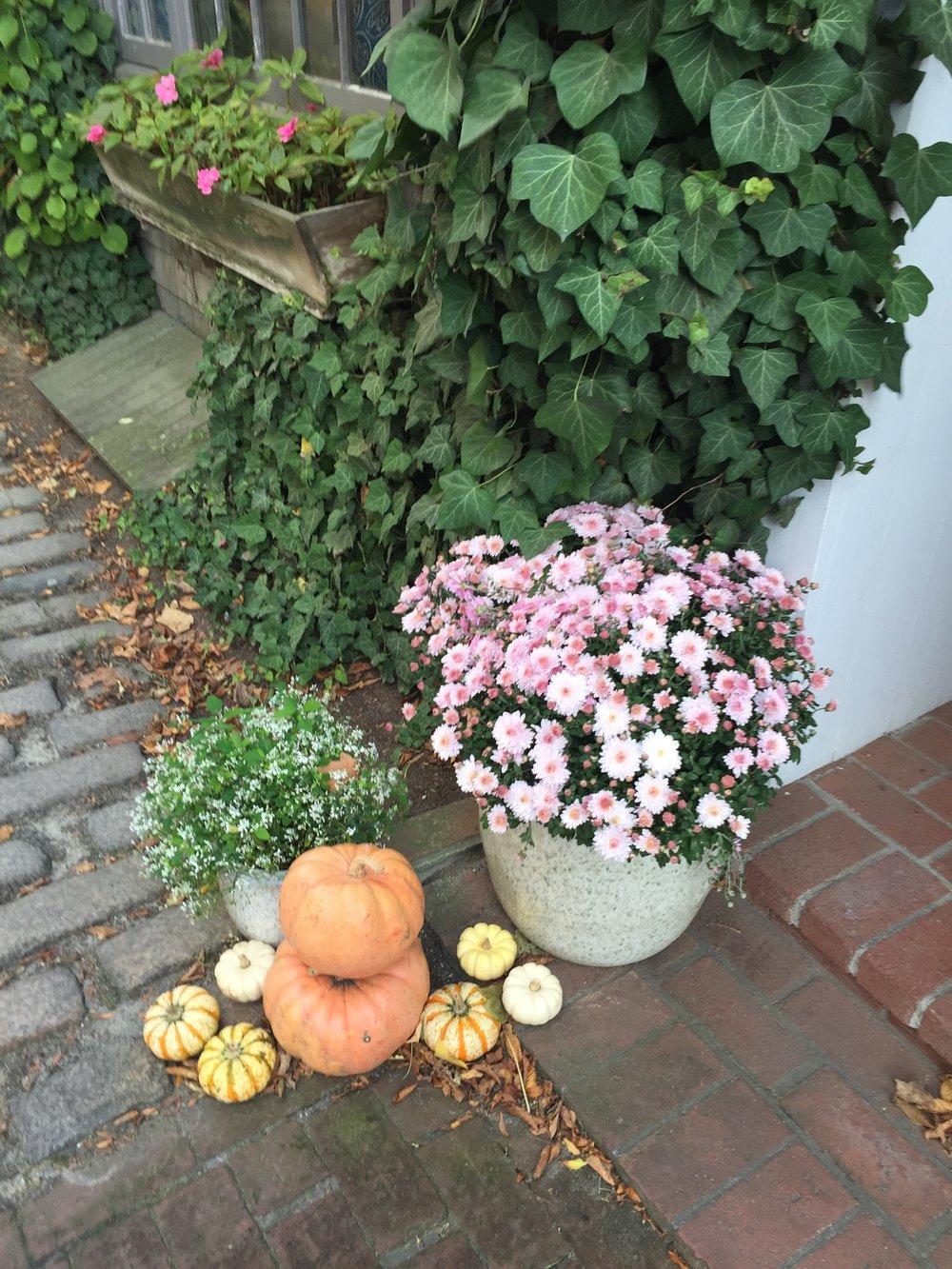 nantucket_autumn_debby_lee_anderson.jpg