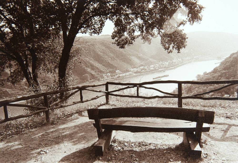 Bench Above Rhine (Oberwesel, Germany)