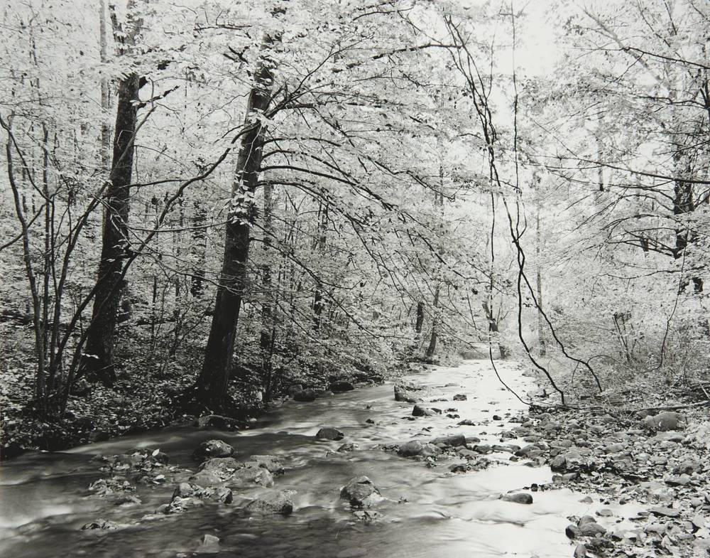 Swift Creek (downstream view) (Virginia)