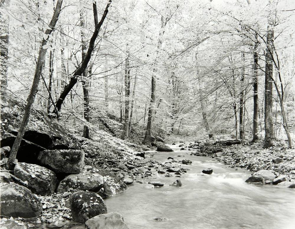 Swift Creek (upstream view) (Virginia)