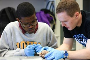 Konrad Kubicki helps a UCW student dissect a sheep brain.