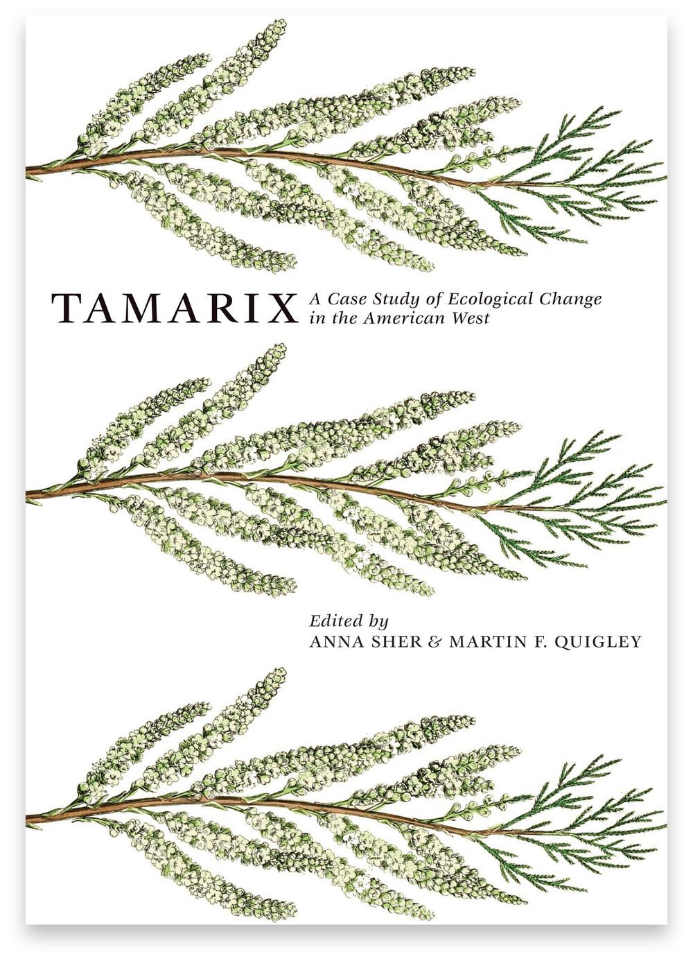 TamarixWebsite1.jpg