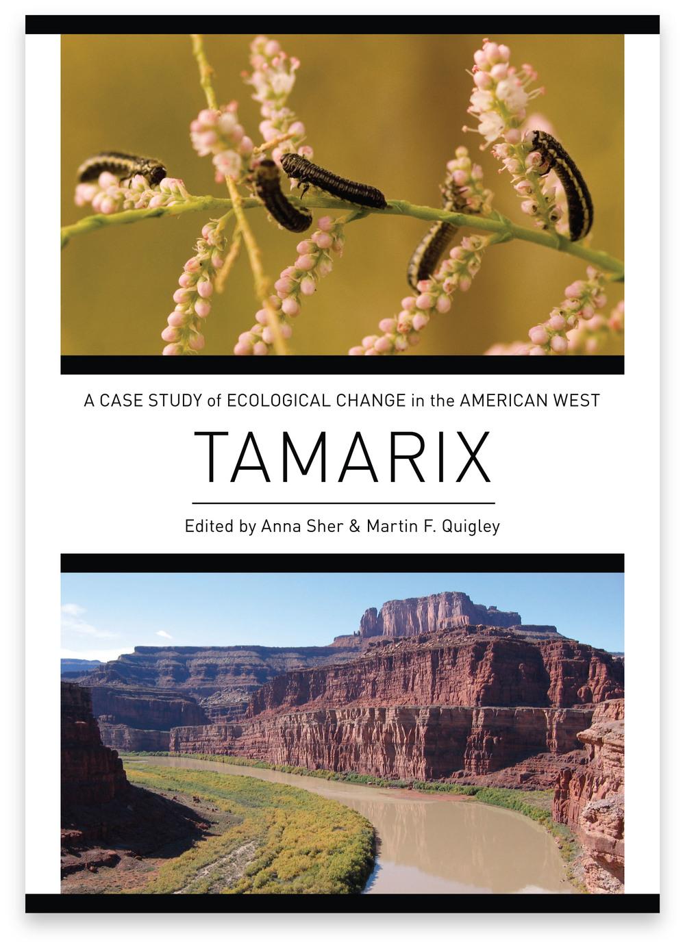 TamarixWebsite2.jpg
