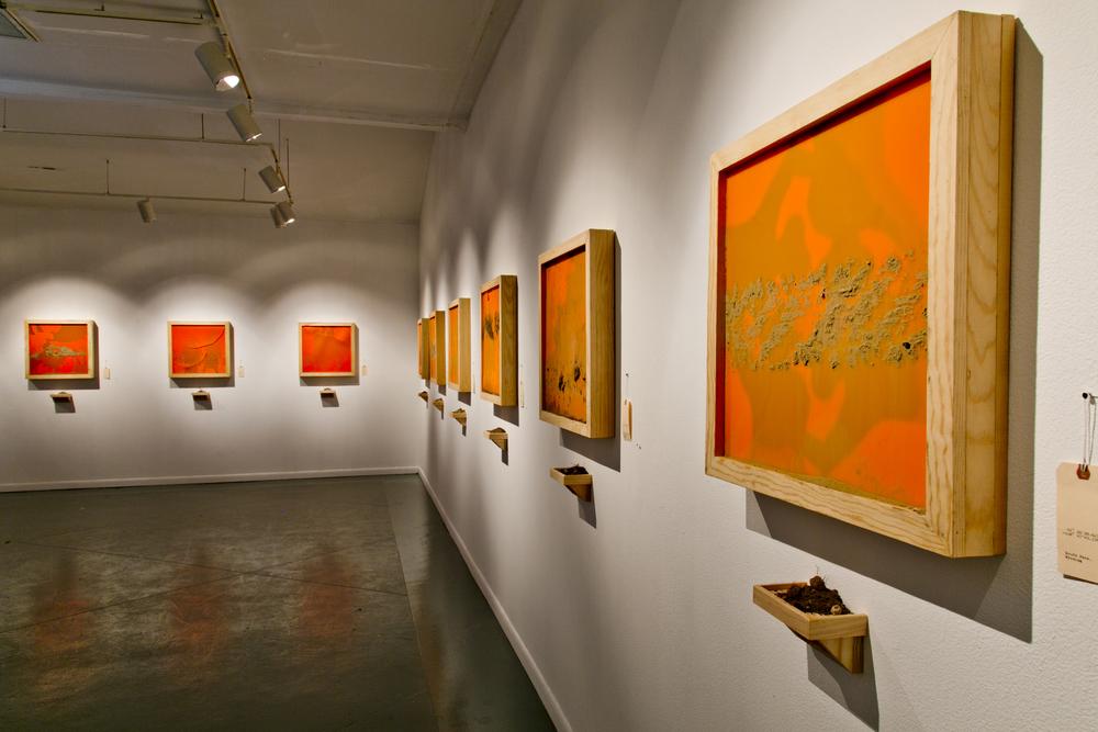Janice Rubin Wax Panels.jpg