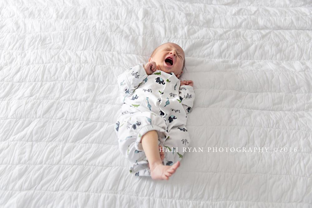 HaliRyanPhotography_BabyMargelefsky15.jpg