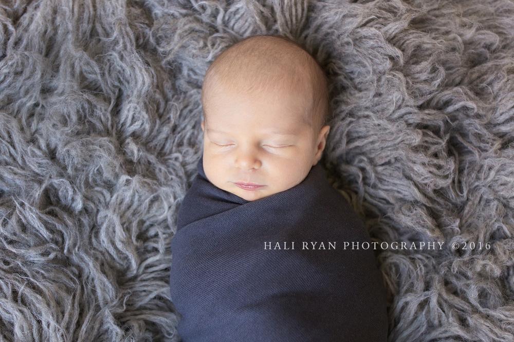 HaliRyanPhotography_BabyMargelefsky42.jpg