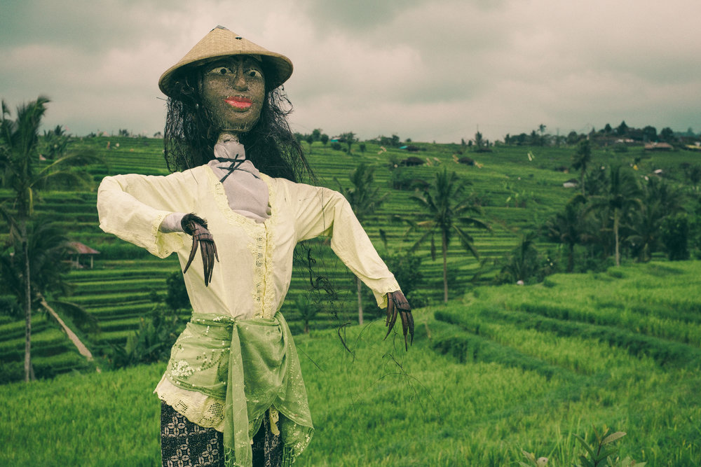 Balinese scarecrow