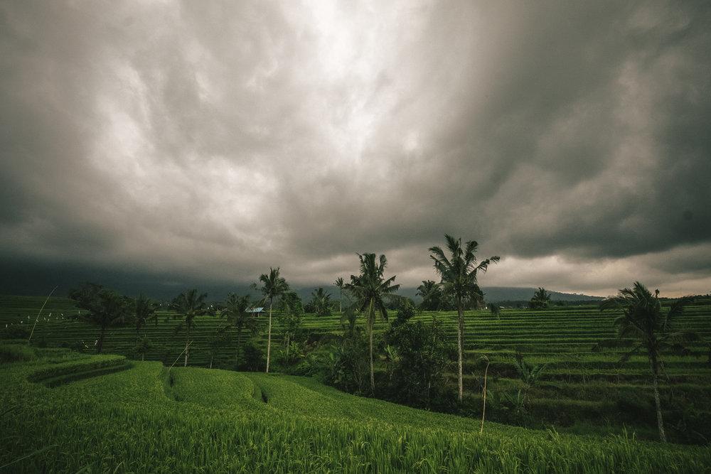 Touring Bali -