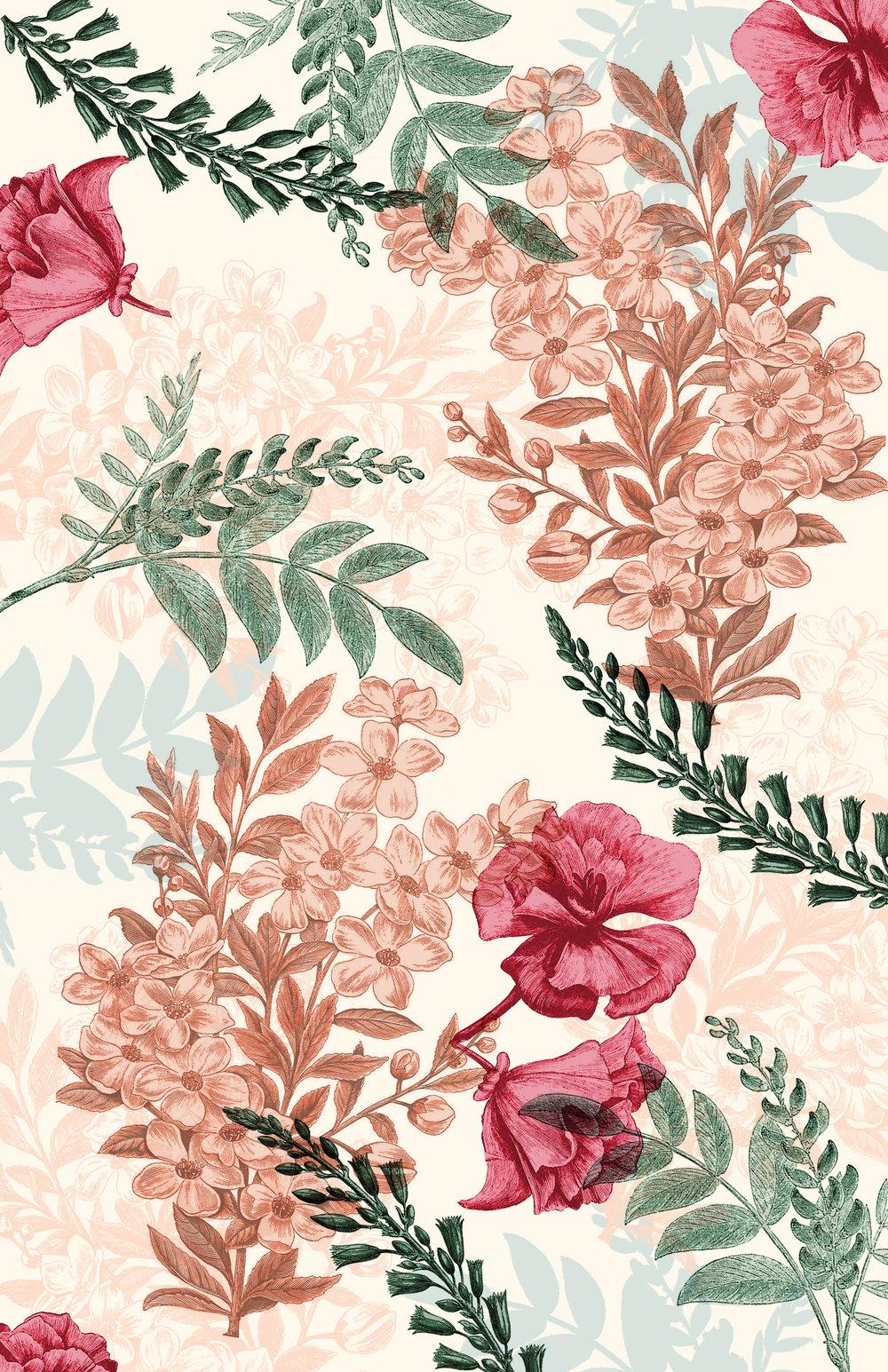 floral+illustrations+overlays.jpg