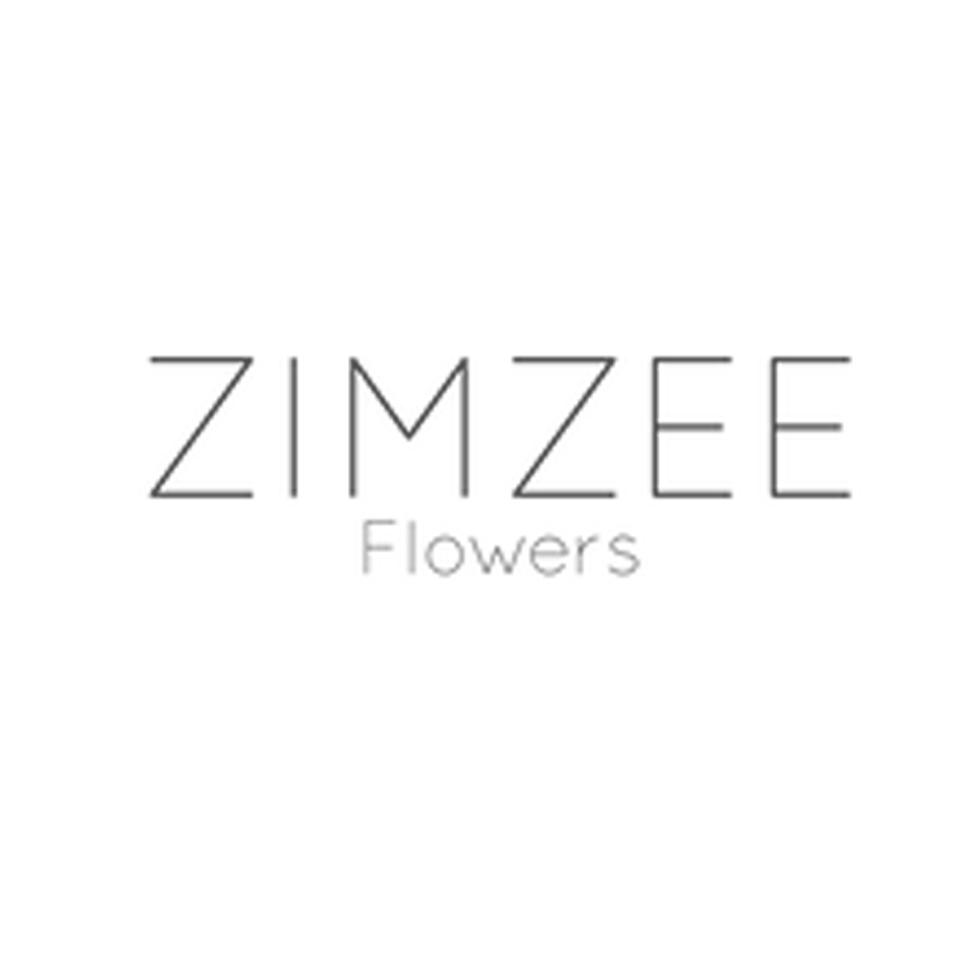 ZimZee.jpg