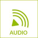 bmg_audio.jpg