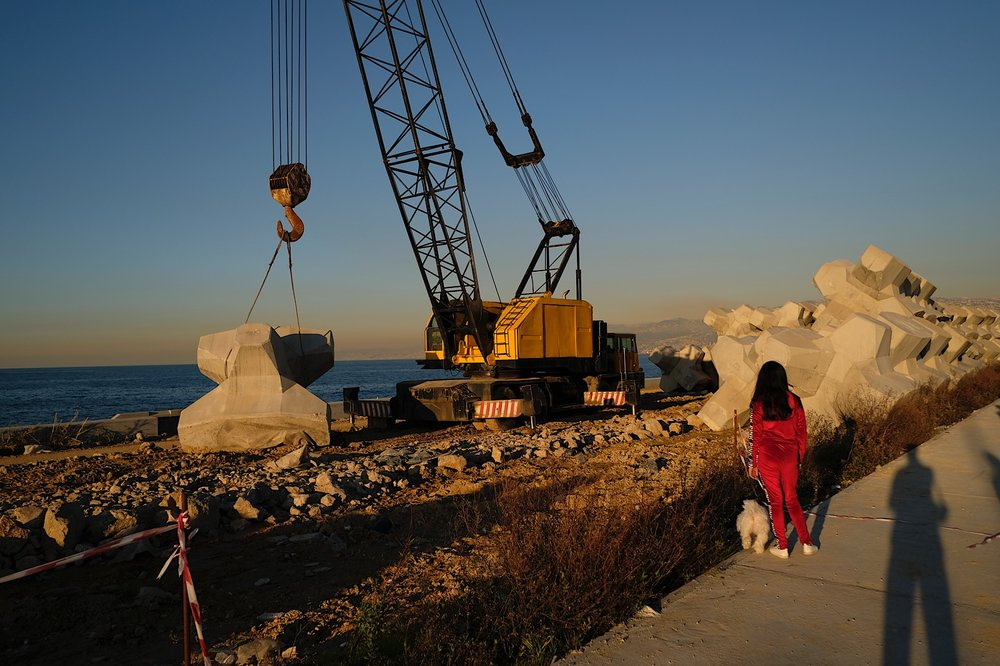 Girl and her dog inspecting crane with concrete breakwater.