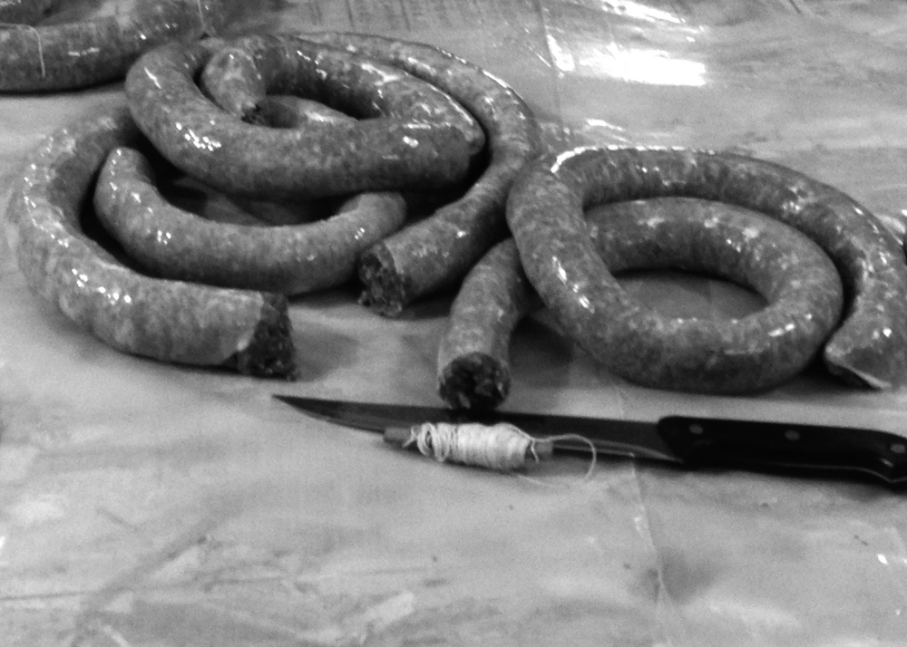 Packed sausage is cut into links then tied for hanging.
