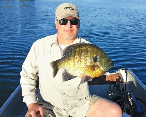 summer_bluegill_fishing.jpg