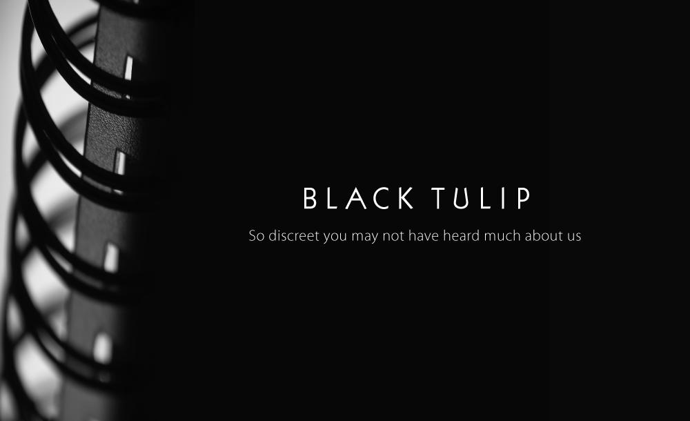 00-BPCC-WEB-black-tulip-01.png