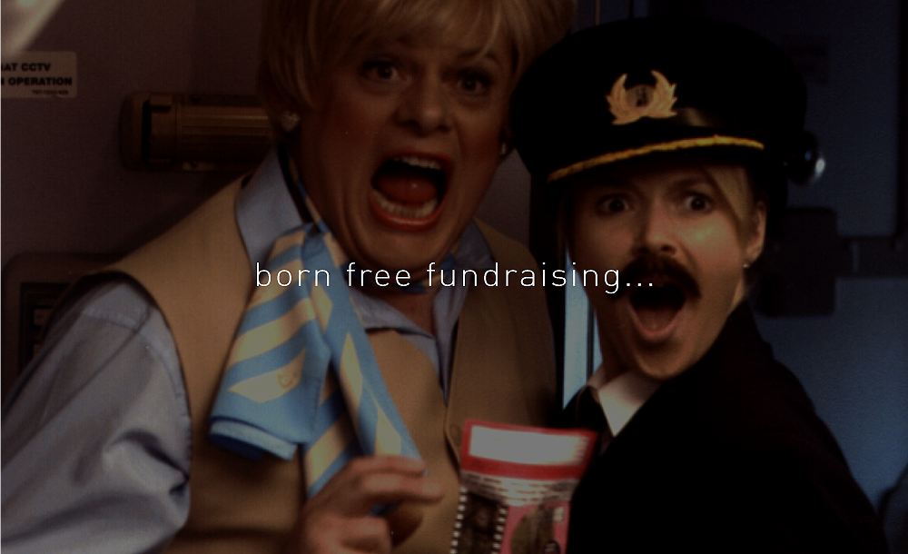 00-BPCC-WEB-BFF-section-funds.png