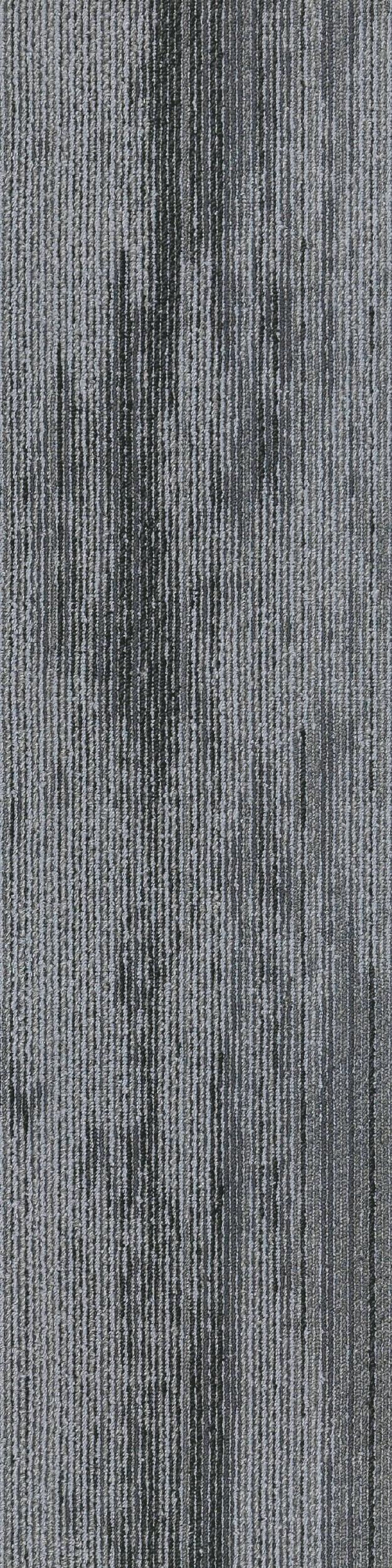 Forest Floor_884 008_100x25_RGB.jpg
