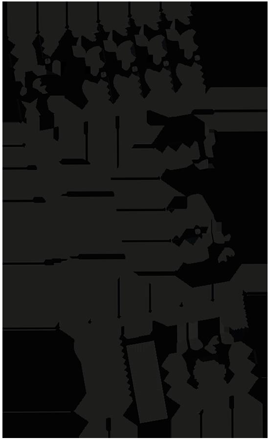 Plan R+3