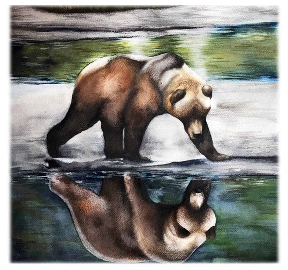 Brown Bear Reflection_8x10.jpg