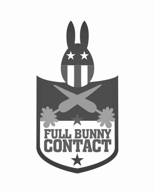 bunny-shield-02c.jpg