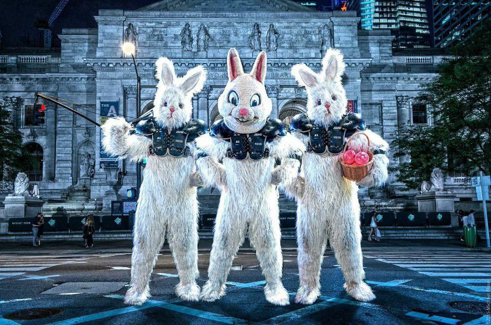 Full Bunny Contact 2015
